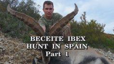 Beceite Ibex Hunt in Spain – Part 1