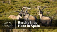Beceite-Ibex-Spain
