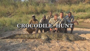 Crocodile-Hunt