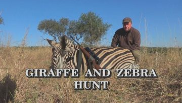 Giraffe-and-Zebra-Hunt
