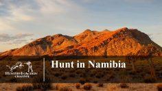 Hunt-in-Namibia