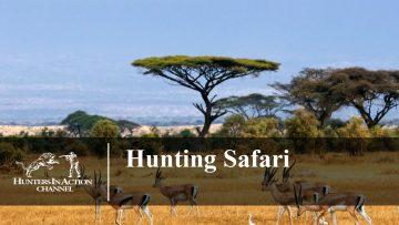Hunting-Safari