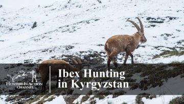Ibex-hunting-in-Kyrgyzstan