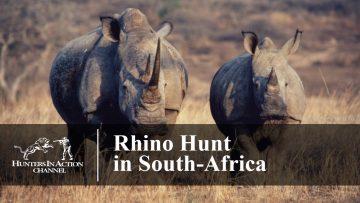 Rhino-Hunt-in-South-Africa