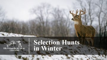 Selection-Hunts-in-Winter