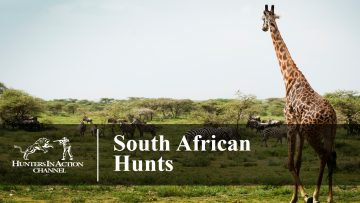 South-African-Hunts