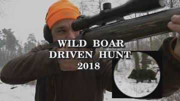 Wild-Boar-Driven-Hunt-2018