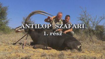 Antilop szafari 1