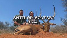 Antilop szafari 3