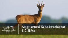 Augusztusi-őzbakvadászat
