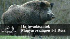 Hajtóvadászatok-Magyarországon