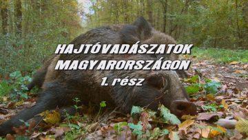 Hajtovadaszatok Magyarorszagon 1
