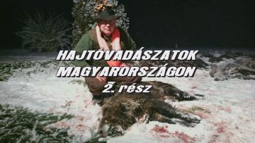 Hajtovadaszatok Magyarorszagon 2
