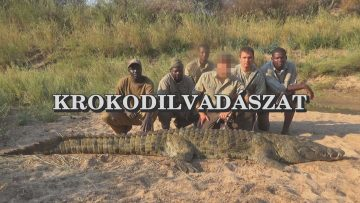 Krokodilvadaszat 1