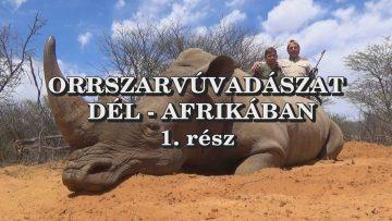 Orrszarvuvadaszat Del-Afrikaban 1