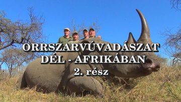 Orrszarvuvadaszat Del-Afrikaban 2