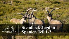 Steinbock-Jagd-in-Spanien-Teil1-2