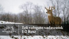Téli-válogató-vadászatok