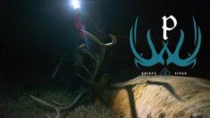 Colorado-Late-Season-Elk-Hunting-with-Kristy-Titus