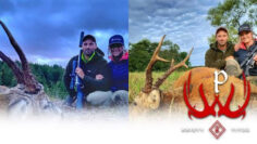 Roe-Deer-Hunting-in-Sweden-with-Kristy-Titus