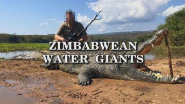 Zimbabwean-water-giants