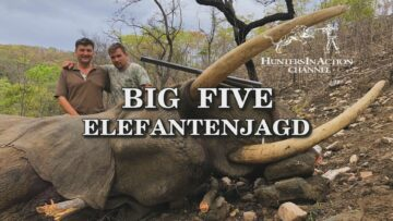 big-five-elefantenjagd