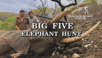 big-five-elephant-hunt